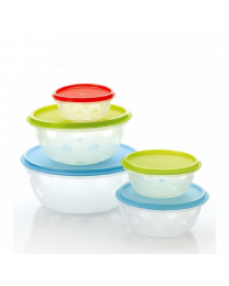 Loozito Container 5 Pcs Set  300 ml 450 ml 850 ml 1400 ml 2500 ml Plastic Grocery Container