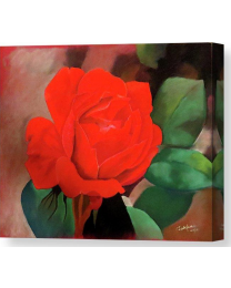 Rose- Fine Art Canvas Print- Wall Art- Stretched